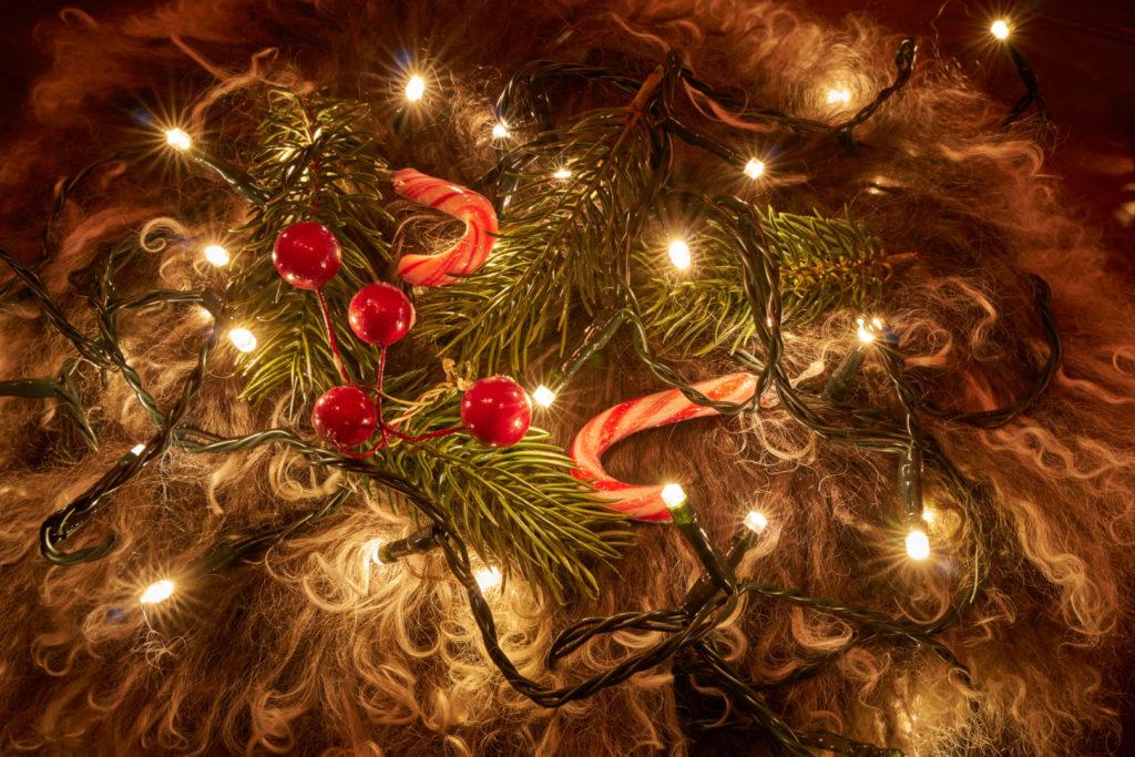 Bessere Weihnachtsfotos - Glanzlichter